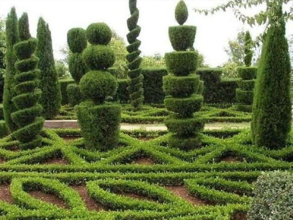 Ландшафтный дизайн из кустарников