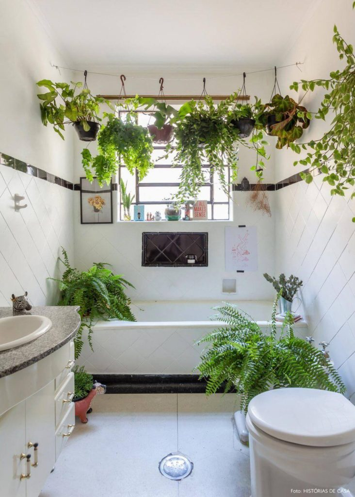 Декор ванной комнаты живыми растениями