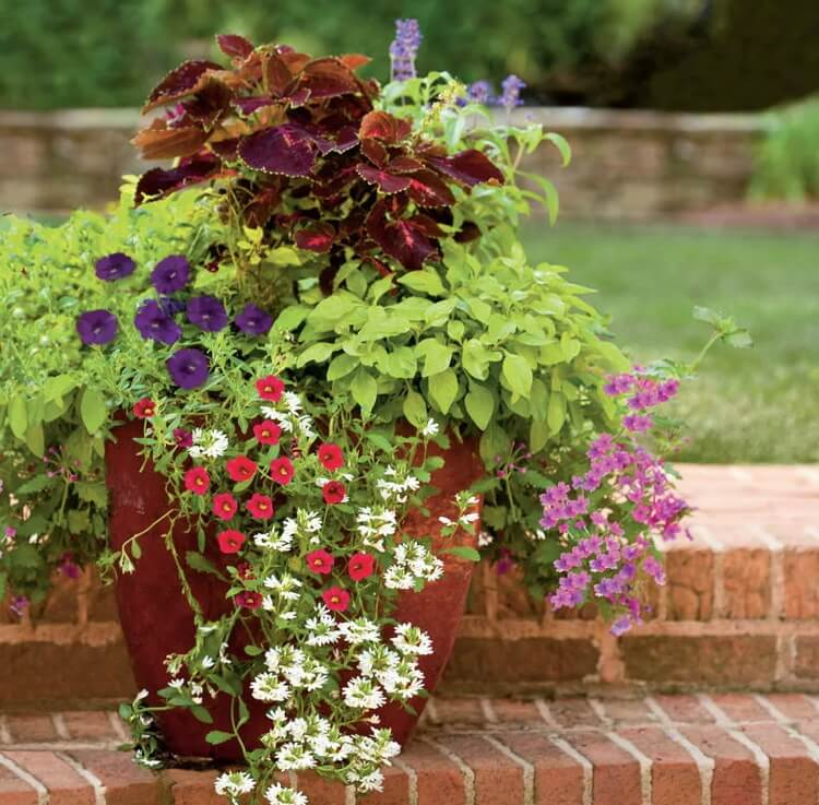 Контейнеры и уличные вазоны для цветов